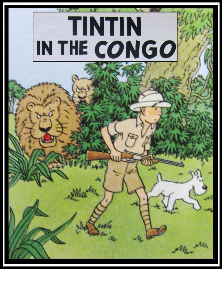 Tintin Adventures