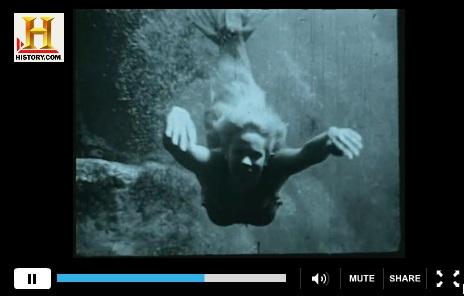 Mermaids and Manatees