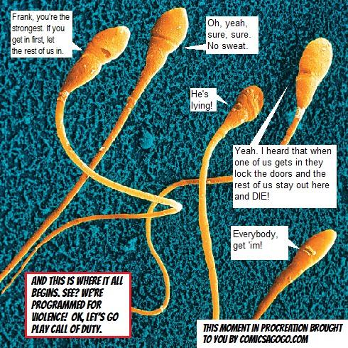 Human Sperm through an Electron Microscope