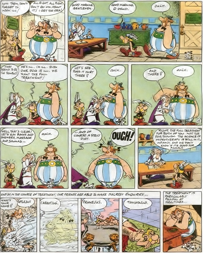 Asterix and the Chieftain's Shield - Obelix at the Hydro