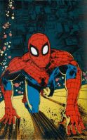 Marvel Fanfare Pinup: Spiderman by Klaus Janson