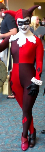 Sexy Harley Quinn Costume