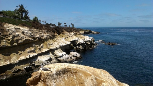 La Jolla Cliff by Cave