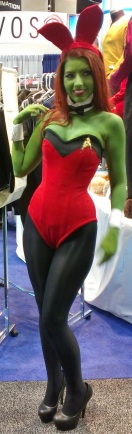 Sexy Playboy Star Trek costume