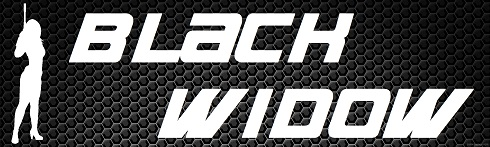 Black Widow art with gunmetal background